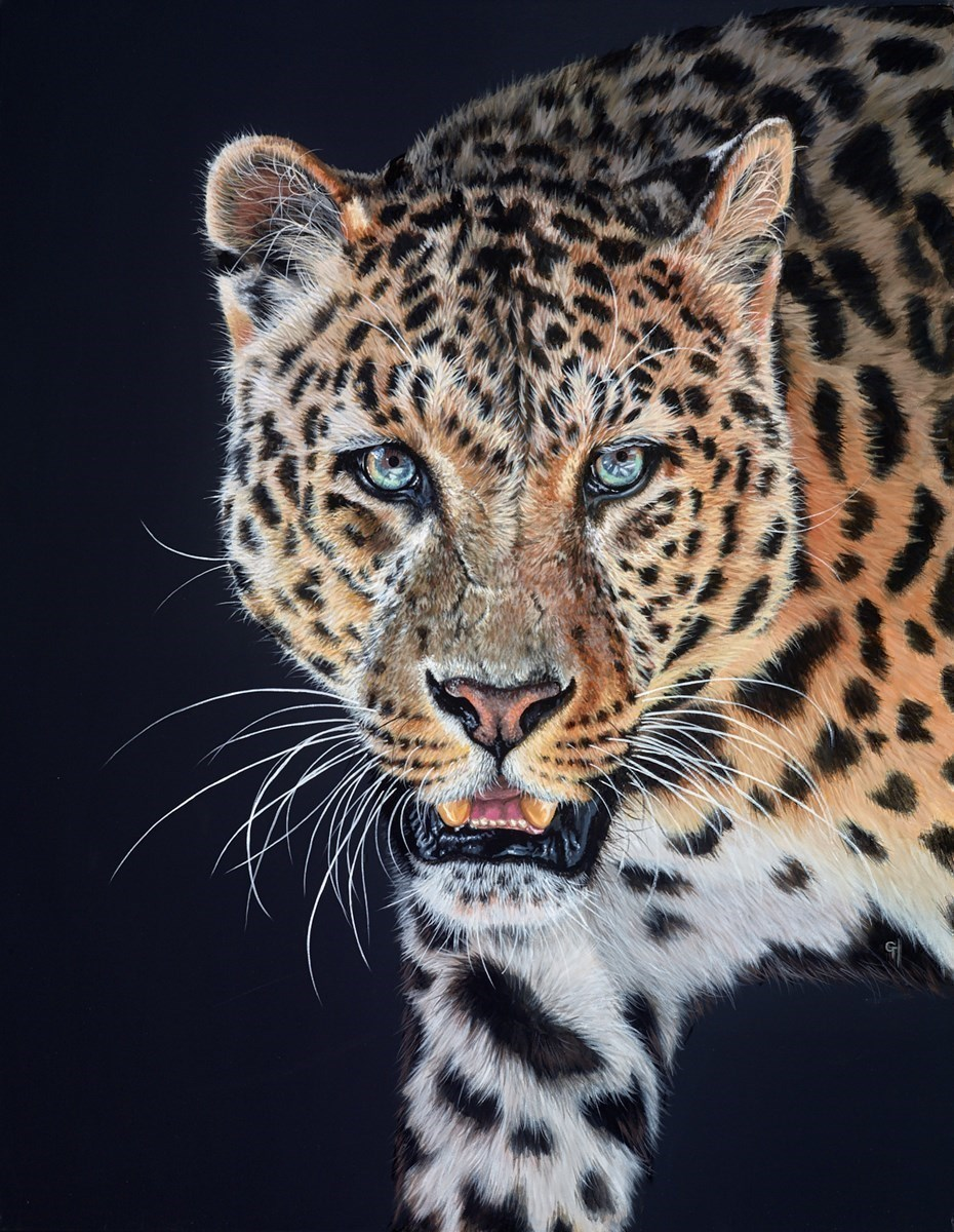 Jungle Prowl by Gina Hawkshaw -  sized 28x36 inches. Available from Whitewall Galleries
